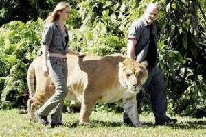 luanesha me e madhe ne bote