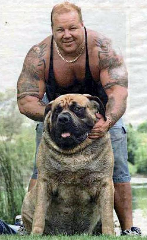 qeni me i madh ne bote