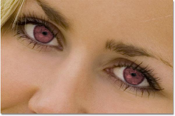 sy te kuq