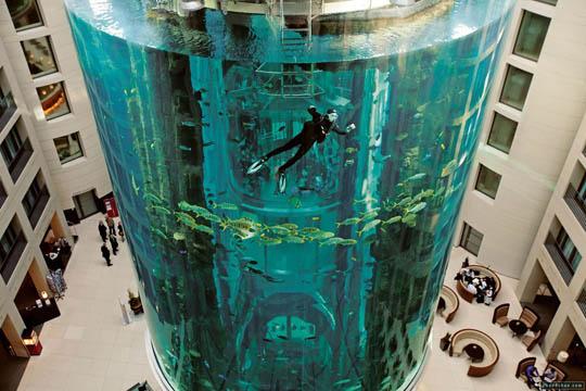 aquadom-berlin-aquarium